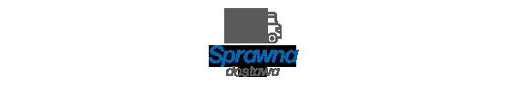 Sprawna dostawa i dystrybucja produktów